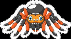 Cartoon Spider Tarantula Sticker