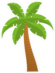 Cartoon Tropical Palm Sticker