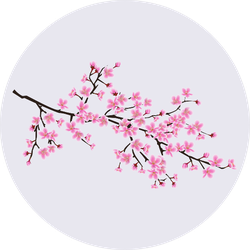 Cherry Blossom Sakura Tree Branch Sticker