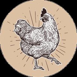 Chicken Hand Drawn Illustration On Brown Sticker