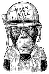 Chimpanzee Monkey Dressed As Soldier Sticker