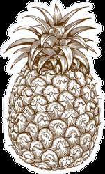Classic Pineapple Engraving Illustration Sticker