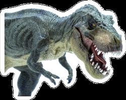 Close Up Green Dinosaur Sticker