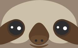 Close Up Sloth Face Sticker