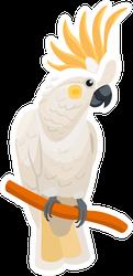 Cockatoo Cartoon Isolated On White Background Sticker