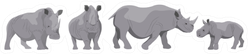 Collection Of Adult White And Black African Rhinos Sticker