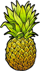 Colored and Inked Pineapple Fruit Sticker