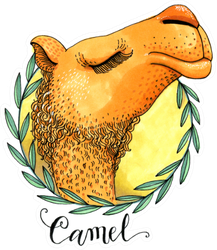 Colored Camel's Head In A Wreath Of Olive Leaves Sticker