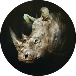Colored Drawing Of The Muzzle Of The Rhino Sticker
