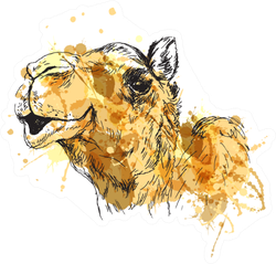 Colored Hand Sketch Of The Head Of A Camel Sticker