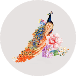 Colorful Flowers Peacock Illustration Sticker