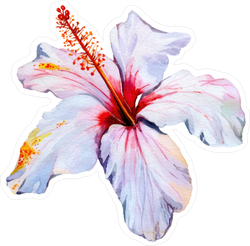 Colorful Hibiscus Flower Sticker