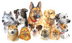 Colorful Portraits Of Dog Breeds Sticker