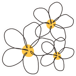 Continuous Line Simple Drawing Of Plumerias Sticker