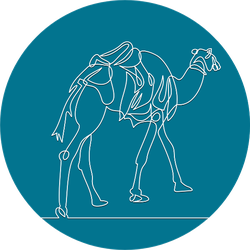 Continuous Line. The Camel Is Walking In The Desert Blue Sticker