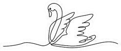 Continuous One Line Swan Drawing Sticker
