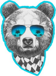 Cool Bear With Sunglasses And Scarf Sticker