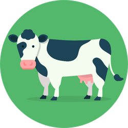 Cow Isolated On Green Background Sticker