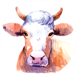 Cow. Watercolor Illustration Colorful Sticker