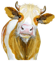 Cow Watercolor Illustration Isolated On White Sticker