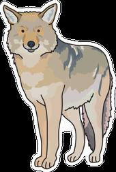 Coyote Cartoon Sticker
