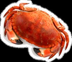 Crab Birds Eye View Sticker