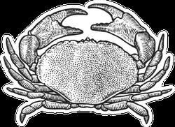 Crab Illustration In Sketch Style Sticker