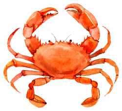 Crab Isolated On White Background Watercolor Sticker