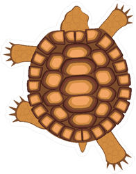 Crawling Tortoise Sticker