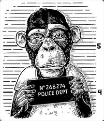Criminal Monkey Mug Shot Sticker