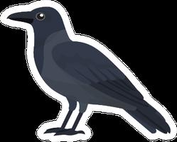 Crow Cartoon Sticker