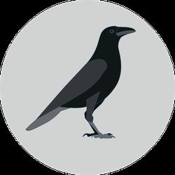Crow Raven Bird Illustration On Grey Sticker
