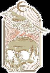 Crow With Skull Illustration Sticker