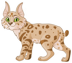Cute Bobcat Sticker