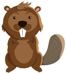 Cute Cartoon Beaver In Flat Style Sticker
