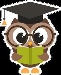 Cute Cartoon Brown Owl With Book Sticker