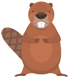 Cute Cartoon Flat Standing Beaver Sticker