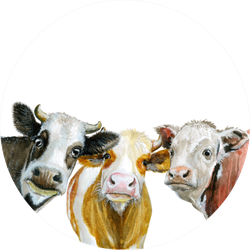 Cute Cows Watercolor Illustration Isolated On White Sticker
