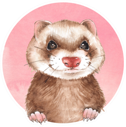 Cute Ferret Pink Watercolor Illustration Sticker