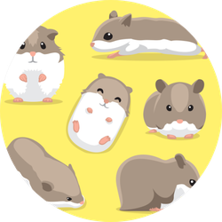 Cute Hamster Poses Cartoon On Yellow Sticker