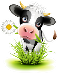 Cute Holstein Cow In Green Grass Sticker