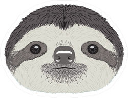 Cute Sloth Face Illustration Sticker