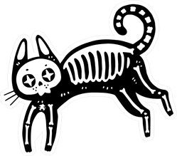 Cute X Ray Cat Sticker