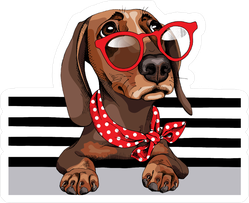 Dachshund Dog In A Red Sunglasses Stickers
