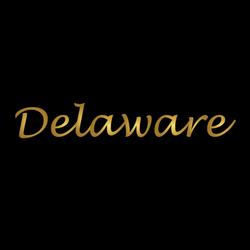 Delaware Logo Gold Lettering Sticker