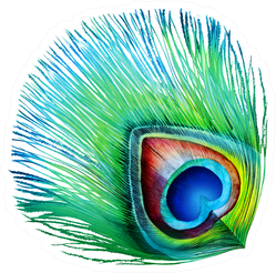 Detailed Turquoise Peacock Feather Isolated Sticker