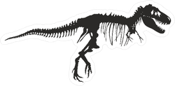 Dinosaur Skeleton Sticker