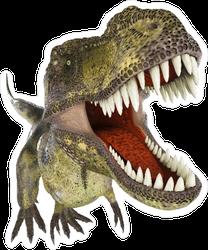 Dinosaur Up Close Sticker