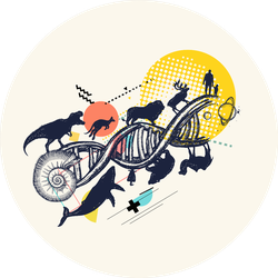 Dna Concept Evolution From Unicellular Organism To Mammals Sticker