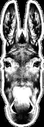 Donkey Head Black And White Sketch Sticker